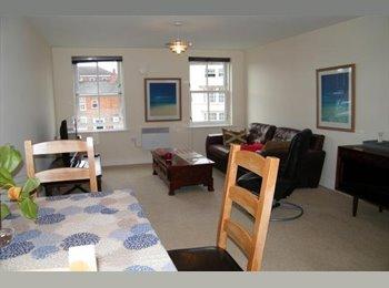 EasyRoommate UK - Luxury Apartment with own Bathroom - Stratford-upon-Avon, Stratford-upon-Avon - £420