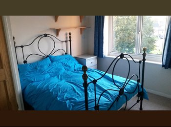 EasyRoommate UK - Double Room in Flat - Whipton, Exeter - £350