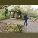 EasyRoommate UK - PhD graduate seeking room in Durham City - Durham - Image 1 -  - £ 400 per Month - Image 1