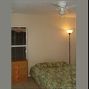 EasyRoommate US $400,including everything!!!! - Osceola County, Orlando Area - $ 400 per Month(s) - Image 1
