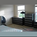 EasyRoommate US need clean and safe? - Orlando - Orange County, Orlando Area - $ 500 per Month(s) - Image 1