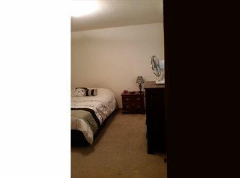 EasyRoommate US - Large bedroom with large walk- in closet - Norfolk, Norfolk - $575