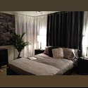 EasyRoommate US Amazing Room w/ Awesome Roommates! - College Grove, Central Inland, San Diego - $ 650 per Month(s) - Image 1