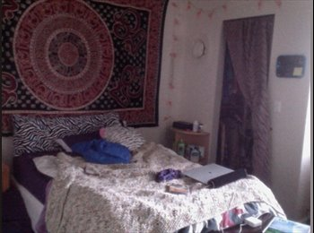 EasyRoommate US - Rams Village apartment - Fort Collins, Fort Collins - $530