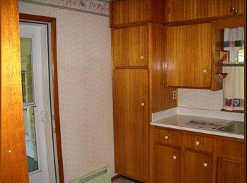 EasyRoommate US - Roommate needed Rent Flexible - Hamilton, Indianapolis Area - $350