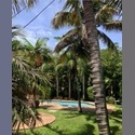 EasyRoommate US House in Coral Gables/South Miami neighborhood - Coral Gables, Miami - $ 1250 per Month(s) - Image 1