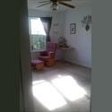 EasyRoommate US bottom level of 2700sq ft home - West Atlanta, Atlanta - $ 542 per Month(s) - Image 1