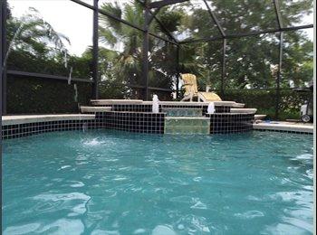 EasyRoommate US - Room for Rent - Orlando - Orange County, Orlando Area - $500