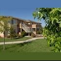 EasyRoommate US Roommate Needed $425 Month / Clovis - Sunnyside, Fresno - $ 425 per Month(s) - Image 1
