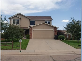 EasyRoommate US - Basement for Rent - Colorado Springs, Colorado Springs - $600