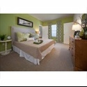 EasyRoommate US Affordable living in up and coming area - West Tampa, Tampa - $ 700 per Month(s) - Image 1