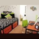 EasyRoommate US Room Available for Rent-$450!! - San Marcos - $ 450 per Month(s) - Image 1