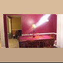 EasyRoommate US House to Share Must love Dogs - Raleigh - $ 500 per Month(s) - Image 1