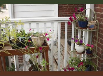 EasyRoommate US - Spacious rooms for rent in gorgeous fan home - Richmond Central, Richmond - $500