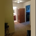 EasyRoommate US 2 private rooms & private bath Novembers rent FREE - Arlington - $ 800 per Month(s) - Image 1