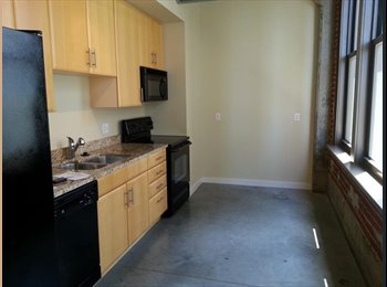 EasyRoommate US - Looking for a roommate in Downtown STL - Downtown St Louis, St Louis - $567