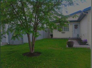 EasyRoommate US - Room for rent $365 utilities included - Missoula, Missoula - $365