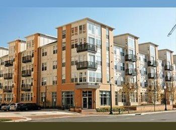EasyRoommate US - Prestigious Silverton Condominium - Silver Spring, Other-Maryland - $1575