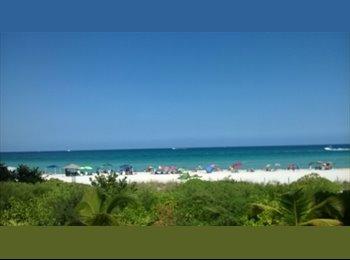 EasyRoommate US - roommate - Miami Beach, Miami - $900