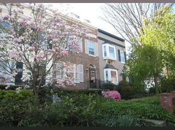 EasyRoommate US - Georgetown Furnished Basement Studio Apartment - Georgetown, Washington DC - $1750