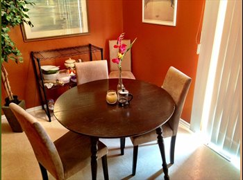 EasyRoommate US - Cozy 1 Bedroom home on South Campus - Outer Comstock, Syracuse - $550