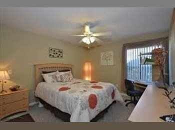 EasyRoommate US - $480 FULLY FURNISHED 1BD/1BA Sublease - Tallahassee, Tallahassee - $480