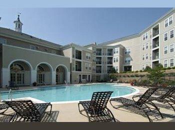 EasyRoommate US -  $1000 / 1411ft² - 1BR in Large Luxury 3BR/2BA Con - Arlington, Arlington - $1000