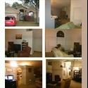EasyRoommate US River Park House - Orlando - Orange County, Orlando Area - $ 600 per Month(s) - Image 1