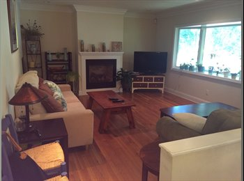 EasyRoommate US - Bedroom for rent - Stamford, Stamford Area - $775