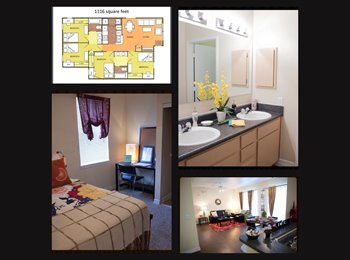 EasyRoommate US - Full 4 bedroom 2 bath Available Asap! - San Marcos, San Marcos - $459