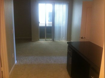 EasyRoommate US - Private studio in 3br apt. incl. own entrance and - Marina del Rey, Los Angeles - $1700