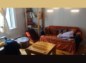 EasyRoommate CA - Cherche colocataire pour partager un beau 4 1/2 - Mercier - Hochelaga - Maisonneuve, Montréal - $365