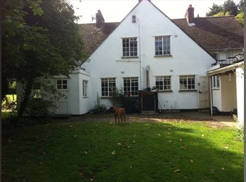 EasyRoommate UK - Large farmhouse, Old Harlow - Harlow, Harlow - £450