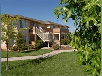 EasyRoommate US - Roommate Needed $425 Month / Clovis - Sunnyside, Fresno - $425