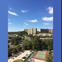 EasyRoommate US Rare Opportunity : ALL UTILITIES INCLUDED - Alexandria - $ 1600 per Month(s) - Image 1