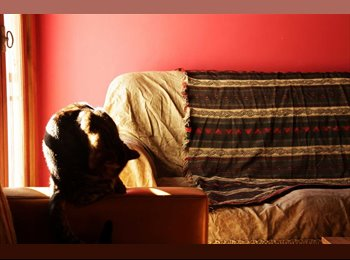 CompartoDepto AR alquilo habitacion individual  NO ES HOSTEL - Belgrano, Capital Federal - AR$3000 por Mes(es),AR$692 por SemanaAR$0 por Días - Foto 1