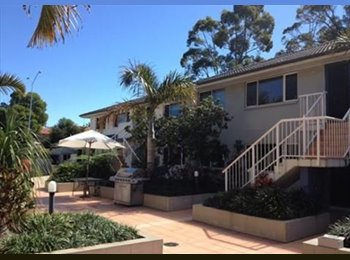 EasyRoommate AU - Room for rent: student accommodation - Ashmore, Gold Coast - $867