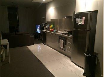 EasyRoommate AU - Room to rent in Westmead - Westmead, Sydney - $1083