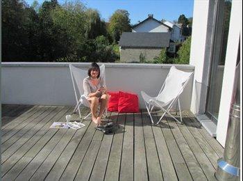 Appartager BE - demi maison a partager et chambre privee a wepion - Namur-Namen, Namur-Namen - €375