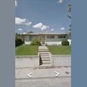 EasyRoommate CA Roommate needed for Nov 1st! SW Calgary - Calgary, Calgary - $ 700 per Month(s) - Image 1