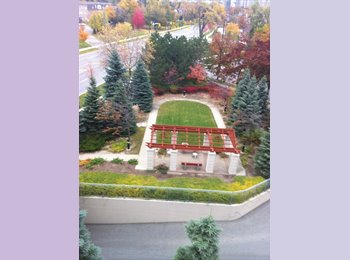 EasyRoommate CA - A little cleaning - Yonge & Sheppard, Toronto - $500