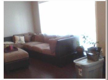 EasyRoommate CA - Room for rent in 3 bedroom house - North West, Edmonton - $480