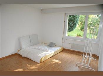 EasyWG CH - SUCHE MITBEWOHNER PER SOFORT! - Hongg-Wipkingen - 10. Bezirk, Zürich / Zurich - CHF1150