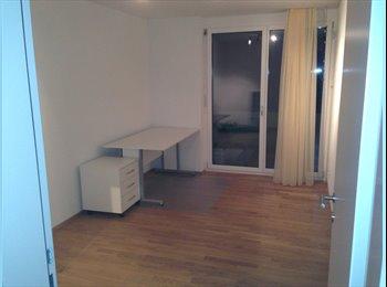 EasyWG CH - WG Partner/in gesucht für schöne 3.5 Zimmer WG - Hochdorf, Lucerne / Luzern - CHF910