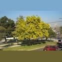CompartoDepto CL estudiantes,prácticas,profesionales - Ñuñoa, Santiago de Chile - CH$ 280000 por Mes - Foto 1