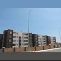 CompartoDepto CL Busco compañero para compartir depto - Antofagasta - CH$ 200000 por Mes - Foto 1