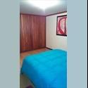 CompartoApto CO Alquilo amplia habitacion en palermo - Manizales - COP$ 450000 por Mes(es) - Foto 1