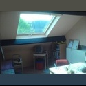 EasyKot EK Apartment with one bedroom - Centrum, Leuven-Louvain - € 635 per Maand - Image 1