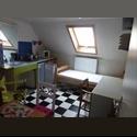 EasyKot EK gezellig kot in het centrum - Gent-Gand - € 350 per Maand - Image 1