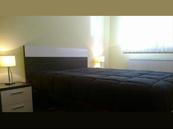 EasyPiso ES - Compartir piso - Centro, Vitoria-gasteiz - €300